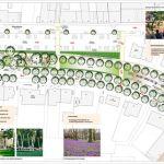 Planung Grünzug Rutwenwall